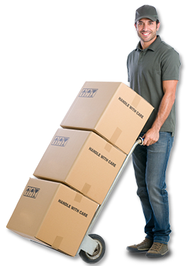 best-removalist